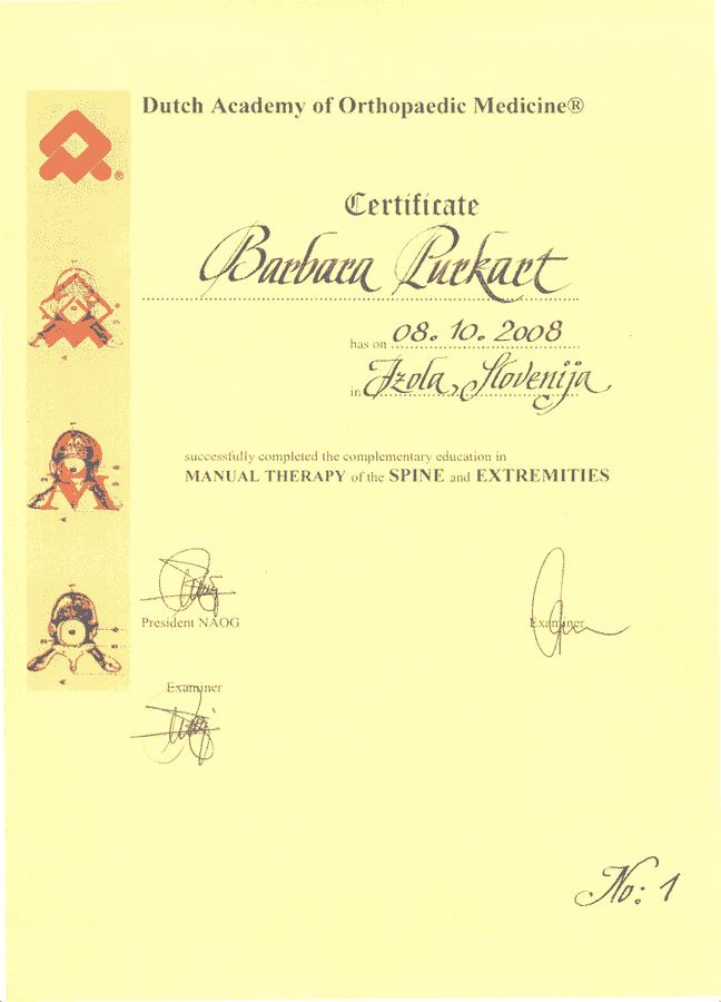 diploma manualna terapija v ljubljani
